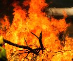 Australia's east coast on high alert for bushfire