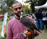 EGYPT CAIRO PET CARNIVAL