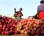 Centre to import 12,660 tons of more onions
