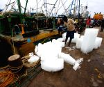 The fishing ban in Tamilnadu is lifted from today hence the fishermen get ready for fishing from tomorrow in Chennai.