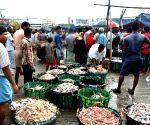 BANGLADESH CHITTAGONG FISH MARKET