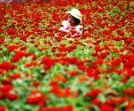 CHINA CHONGQING TOURISM