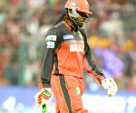 IPL - Royal Challengers Bangalore vs Kolkata Knight Riders