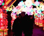 GERMANY-COLOGNE-CHINA LIGHT FESTIVAL