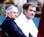 Rahul Gandhi at Congress meeting