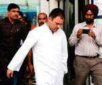 Rahul Gandhi at Amritsar Airport