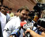 Parliament - Rahul Gandhi