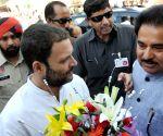 Rahul Gandhi visits Amritsar