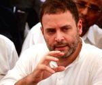 Rahul Gandhi during a party programme