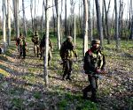 Four LeT militants killed in Jammu and Kashmir - cordon and search operation underway