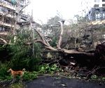 Cyclone Tauktae brings record May rains, leaves trail of destruction in Maha