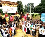 "Dasara elephants being readied for ""Gajapayana"