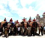 Dasara elephants arrive at Mysuru Palace
