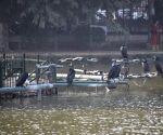 37% bird species use Delhi ponds as winter habitat: Researchers