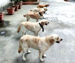 File Photos: Delhi Police Dog Squad
