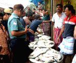 BANGLADESH DHAKA FISH HILSA