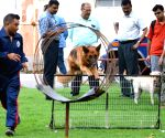 Kolkata Police - Dog squad