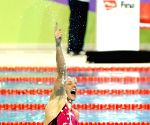 2014 FINA/MASTBANK Swimming World Cup