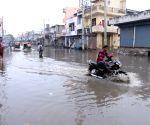 N. India under widespread rainfall, dense fog conditions