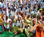 Farmers' sit-in demonstration seeking revision in electricity bills