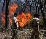 Bandipur (Karnataka): Fire in Bandipur Tiger Reserve