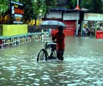 Flood-scarred Maharashtra's toll zooms to 149, 2.29 lakhs evacuated