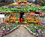 Flower Show at Eden Gardens