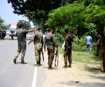 Bagori (Assam): Tiger enters house in Kaziranga