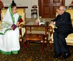 Pratibha Patil calls on  President Mukherjee