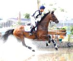 Olympic-bound rider Mirza gets a male for his mare in quarantine