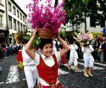 PORTUGAL MADEIRA FLOWER FESTIVAL