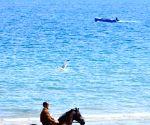 FRANCE SCIEZ LEMON LAKE HORSE RIDING
