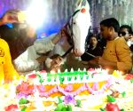 Free Photo: Golu Yadav celebrates birthday of his horse Chetak, cut cake, the party