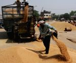 Over 1 lakh MT of food grains given to over 2 cr in 12 states/UTs: Govt