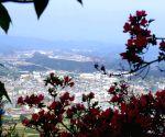 Longqian mountain