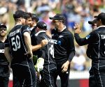 Hamilton (New Zealand): 4th ODI - India V/s New Zealand