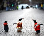 CHINA HARBIN PENGUIN STREET