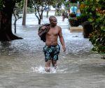 CUBA HAVANA ENVIRONMENT CLIMATE