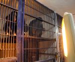Heaters installed at Patna Zoo