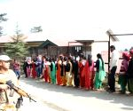 Polling starts in Himachal's two assembly seats