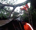Hirapur (West Bengal): Cyclone Fani: NDRF at work
