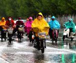 Rain in Hohhot