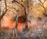 Huge fire broke out at  Nagarhole National Park also known as Rajiv Gandhi National Park in Mysore on Thursday 4th March 2021