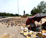 Free Photo:  Hungry animals in the Corona epidemic - people becoming the support of birds