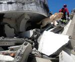 ECUADOR IMBABURA EARTHQUAKE RESCUE DOG DEAD