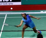 India Open Badminton - Saina Nehwal, P V Sindhu