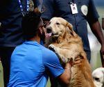 Virat Kohli with a dog after press conference