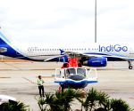 IndiGo to explore options to raise liquidity