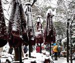 TURKEY ISTANBUL SNOW SCENERY