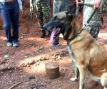ITBP dog 'Sophia' foils IED blast in Chhattisgarh, saves lives